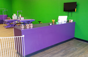 dog grooming front desk